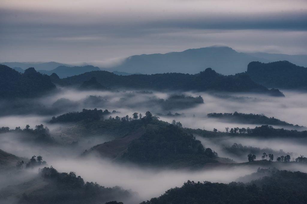 Cold Morning At North Thailand